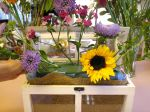 mini greenhouse flower placement by rlc